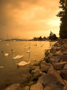 Free Storm Over Lake Balaton Stock Photography - 14004472