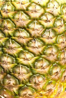 Free Pineapple Background Stock Photo - 14007360