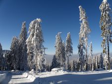 Free Winter Landscape Bohemian Forest Stock Photo - 14008060