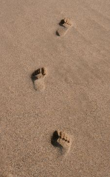Free Footprints On The Beach Stock Image - 14008081