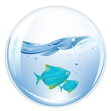 Free Balls With Blue Fishes In Water. Vector Royalty Free Stock Photo - 14009475
