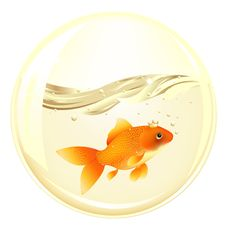 Ball With GoldFish. Vector Stock Photography