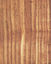 Free Wood Texture Background_zebrano_18 Stock Photo - 14015470