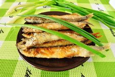 Free Grilled Fish Royalty Free Stock Photos - 14011378