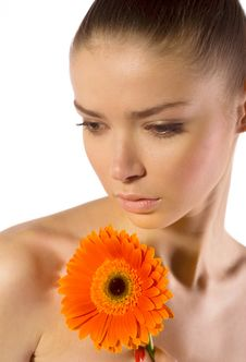 Free Beautiful Young Woman With Gerber Flower Royalty Free Stock Photography - 14012247