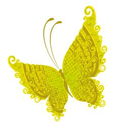Free Tropical Butterfly Stock Photo - 14013070