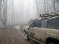 Dirty Road And 4x4 Car In Mist Forest Stock Photos