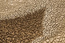Free Arid Soil Royalty Free Stock Image - 14014556