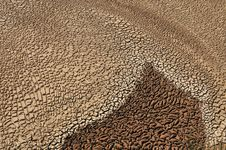 Free Arid Soil Stock Photos - 14015233