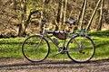 Free Bicycle Stock Photos - 14021273