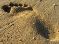 Free Footprint On A Sandy Beach Stock Photo - 14021930