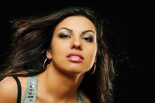Free Portrait Of Beauty Brunette Girl Stock Images - 14020024