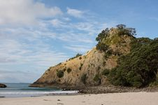 Free Headland At New Chum Beach New Zealand Royalty Free Stock Photography - 14021257