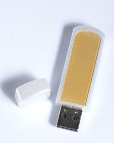 Portable Flash Usb Royalty Free Stock Photo