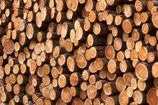 Free Wood Piles Stock Photo - 14026210