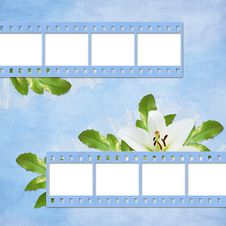 Free Card For The Holiday  With Flowers Royalty Free Stock Images - 14029299