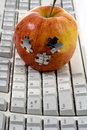 Free Red  Apple On Keyboard Stock Images - 14036564