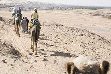 Free Camel Ride Stock Image - 14031131