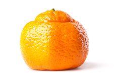 Free Mandarine Stock Photos - 14033813