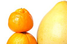Free Citrus Fruits Royalty Free Stock Images - 14033889