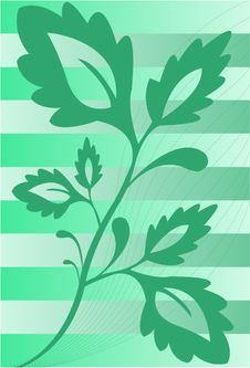 Free The Plant On The Striped Background Stock Photography - 14034712