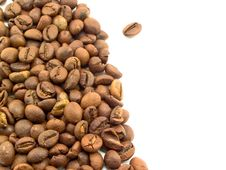 Free Coffee Grain And White Background Stock Image - 14039351