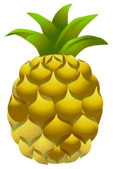 Free Pineapple Royalty Free Stock Photo - 14039555
