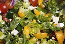 Free Spring Salad Stock Photos - 14039663