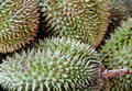 Free Durian Fruit Stock Images - 14048944
