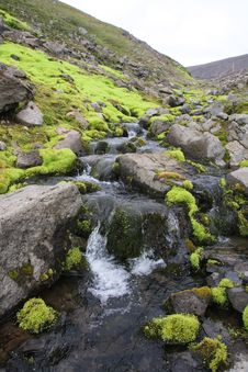 Free A Small Stream Thru The Tundra Royalty Free Stock Photos - 14042528