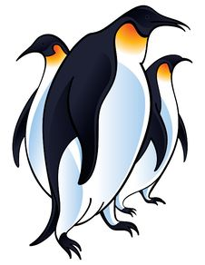 Free Penguins Stock Images - 14044564
