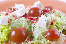 Free Salad Stock Photo - 14045160