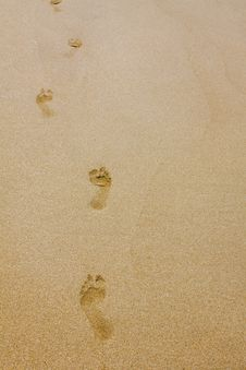 Free Footprints Royalty Free Stock Image - 14046116