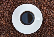 Free Cup Of Coffee Royalty Free Stock Photo - 14046185