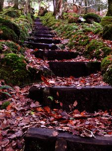 Free Autumn Steps Stock Photography - 14046502