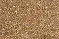 Free Brown Sand Royalty Free Stock Image - 14057366