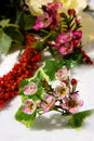 Free Beautiful Bouquet Stock Images - 14058634