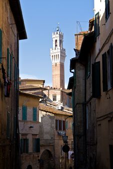 Torre Del Mangia Tower In Siena Stock Photography