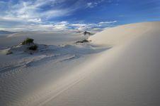 Free Dunescape Stock Image - 14055441