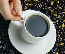 Free Coffee Royalty Free Stock Photo - 14056785