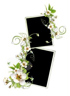 Free Beautiful Spring Frame With Apple Tree Flowers Royalty Free Stock Images - 14057089