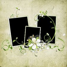 Free Grunge Spring Cherry Flowers Frame Royalty Free Stock Photo - 14057155