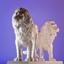 Free Two Lions Stock Images - 14057414