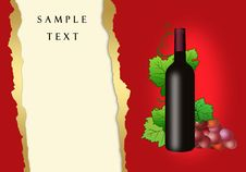 Vine And Bottle Of Wine Royalty Free Stock Photo