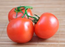 Free Tomatoes Stock Photography - 14059042