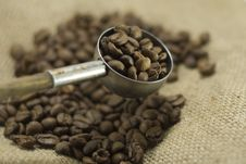 Free Coffee Beans In Scoop Royalty Free Stock Photography - 14059237
