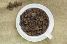 Free Coffee Cup Stock Images - 14059274