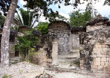 Free Ancient Mayan Temple Stock Photos - 14060563