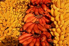 Free Red And Yellow Bananas Stock Photos - 14061483