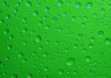 Free Water Drops Stock Photography - 14061542